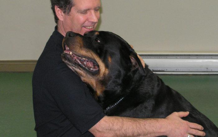 Développement d'un chien-assistant