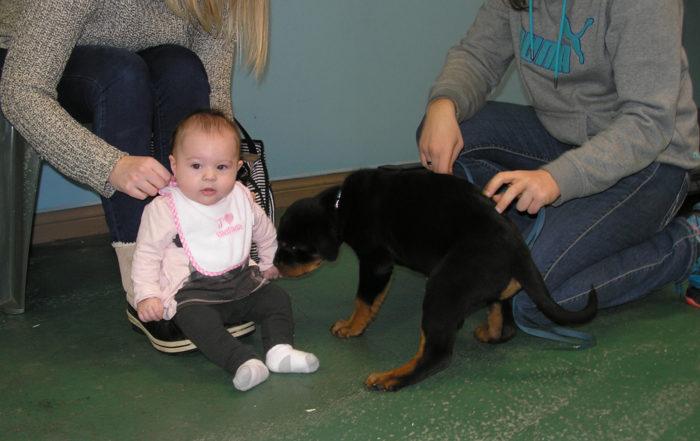Arès et bébé