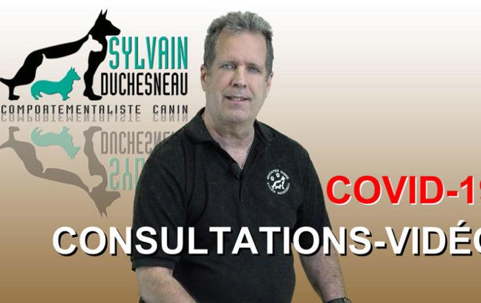 Consultations-vidéo